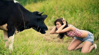 Photo of Country Girls You Can Take Home to Mama (33 Photos)
