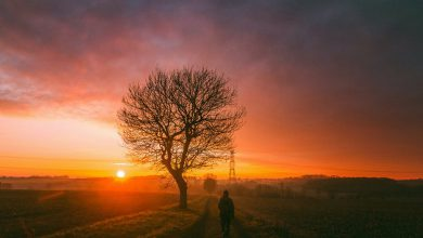 Photo of Rise and Shine (29 Photos)