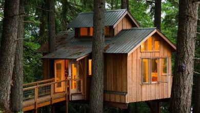 Photo of The 25 Coolest Adult Treehouses on the Planet