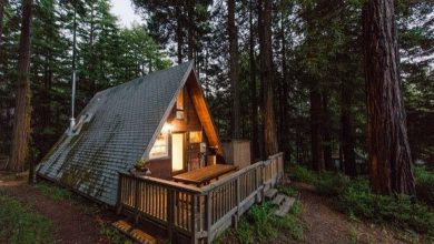 Photo of Dream House – Tiny A-Frame in the Redwoods (23 Photos)