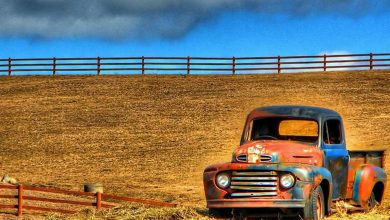Photo of Afternoon Drive – Truck Yeah! (23 Photos)