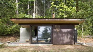 Photo of Perfect Tiny Cabin in British Columbia Woods (8 Photos)