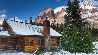 Photo of All I Need is a Little Cabin in the Woods (19 Photos)