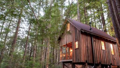 Photo of You Can Rent This Tiny California Cabin on Airbnb (11 Photos)