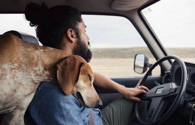 Every Man Should Have a Dog (1)