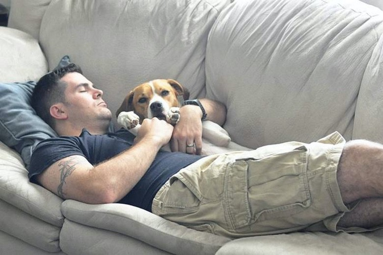 Suburban Men Every Man Should Have a Dog (1)