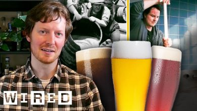 Photo of Every Style Of Beer Explained (Video)