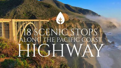 Photo of 18 Scenic Stops Along the Pacific Coast Highway