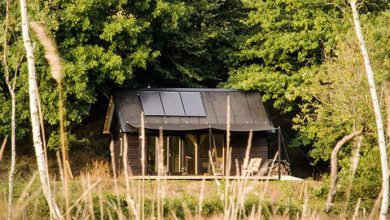 Photo of Former Boat Builder Designs Perfect Off-Grid Tiny Cabins (8 Photos)