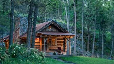 Photo of All I Need is a Little Cabin in the Woods (20 Photos)