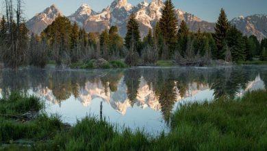 Suburban Men Rise and Shine Outdoors Camping Hiking Hunting Fishing